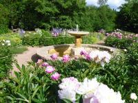 Idée de Sortie Vallière Rendez-vous aux jardins : jardin et arboretum du Domaine de Banizette