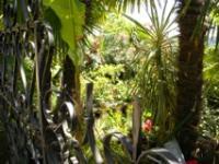 Idée de Sortie La Roque Gageac Jardin exotique de La Roque Gageac