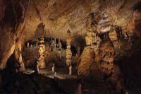 Idée de Sortie Pinsac Grotte des Carbonnières