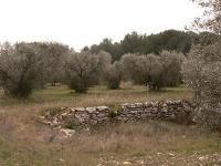 Idée de Sortie Lançon Provence Lançon-Provence : Le sentier de Campagnole
