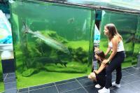 Idée de Sortie Le Bugue Aquarium du Périgord Noir