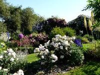 Idée de Sortie Manhac Le Jardin des plantes