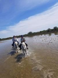 Idée de Sortie Le Rove Balade en Mer Marseille-Côte Bleue