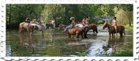 Idée de Sortie Négrondes Ferme équestre HIPPOCAMP'