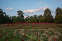 Jardin Millésimé du Chateau Larrivet Haut-Brion Saucats