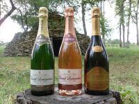 Idée de Sortie Les Riceys Champagne Daniel Lamoureux