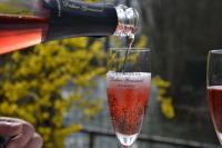Idée de Sortie Les Riceys Champagne Didier Goussard