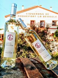 Idée de Sortie Carnoux en Provence Les Vignerons de Roquefort la Bédoule