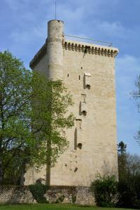 Tour de l'Honneur et son musée 8 Lesparre Médoc