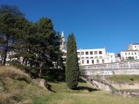 Jardin des Plantes Rhone