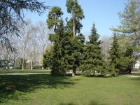 Parc Bazin Rhone