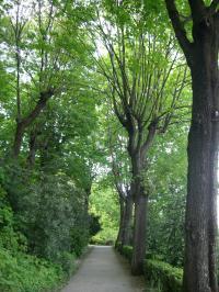 Parc des Hauteurs Rhone
