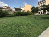 Parc Roquette Champagne au Mont d´Or