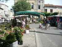 Evenement Saint Rémy de Provence Marché de Maillane