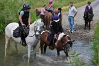 Idée de Sortie La Férée Centre équestre et poney club de Marlemont
