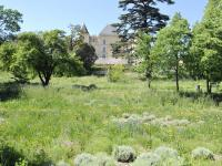 Parc des 7 Collines - Chateau de la Buzine Fontvieille