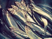 Evenement Carry le Rouet Marché aux poissons