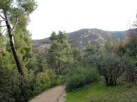 Parc des Bruyères Marseille