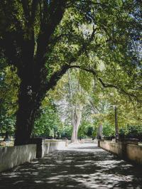 Parc François Billoux Marseille