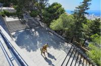 Randonnée dans les collines du Roucas Blanc Marseille