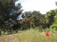 Grand Parc de Figuerolles - Paul Lombard Martigues