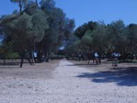 Les jardins méditerranéens du parc de Figuerolles Martigues