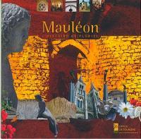 Circuit découverte de Mauléon - Quartier St-Jouin La Forêt sur Sèvre