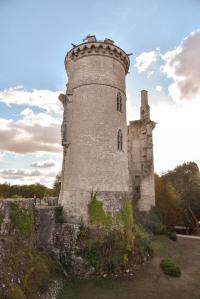 Idée de Sortie Allouis Château Charles VII