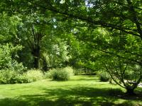 Arboretum du Chemin de la Découverte de Melle Deux Sèvres