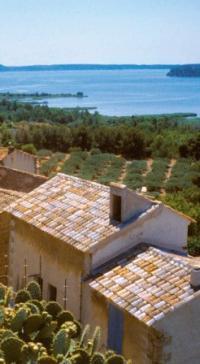 Idée de Sortie Miramas Bouches-du-Rhône en Paysages - Miramas : Entre rail et sites d'exception sur la voie verte