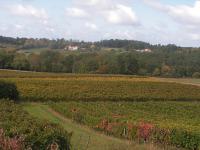 Idée de Sortie Saint Vivien Boucle de randonnée de Montazeau