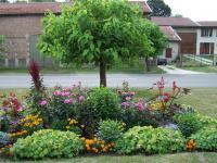 Idée de Sortie Ardeuil et Montfauxelles MONTCHEUTIN, Village Fleuri 2 Fleurs