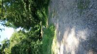 Idée de Sortie Ménesplet Boucle du ruisseau à la rivière Montpon