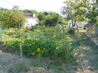 Jardin Epicurien Pyrénées Atlantiques