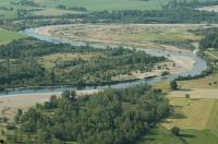 Idée de Sortie La Ferté Hauterive Réserve naturelle nationale du val d'Allier
