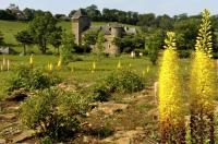 Evenement Saint Cyprien sur Dourdou Les Rendez-vous au Jardin