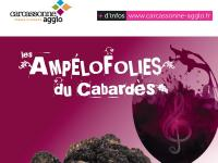 Evenement Bouilhonnac 22ES AMPELOFOLIES DU CABARDES - TRUFFE ET VIN