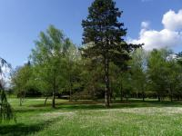 Le Parc Voulgre Saint Médard de Mussidan