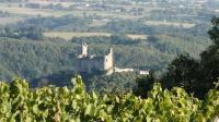 Idée de Sortie La Rouquette Pierre Tournier - Domaine des Vignes Grandes