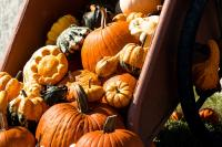 Marche-aux-saveurs-d-automne Naucelle