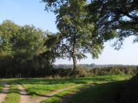 Idée de Sortie Maisonnais Circuit pédestre n9 le sentier de Ferrières