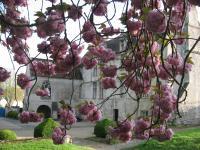Jardins de La Commanderie de Neuilly Montataire