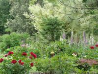 Parc Botanique du Chateau de Neuvic Dordogne