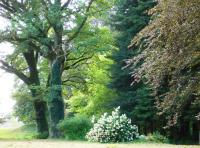 Idée de Sortie Liginiac Visite guidée à l'Arboretum de Neuvic