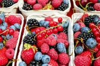 Magasin Nîmes Fruits et Compagnie