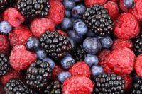 Idée de Sortie Challerange Fruits rouges d'Argonne