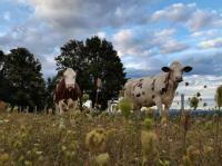 Evenement Franche Comté Visite d'une ferme en polyculture-élevage dans le Doubs