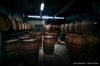 Evenement Orléans Découverte de la vinaigrerie Martin Pouret