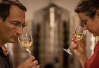 Evenement Barberey Saint Sulpice Visite de la cave à champagne