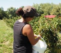 Evenement Bourgogne Visite de l'exploitation côté jardin bio